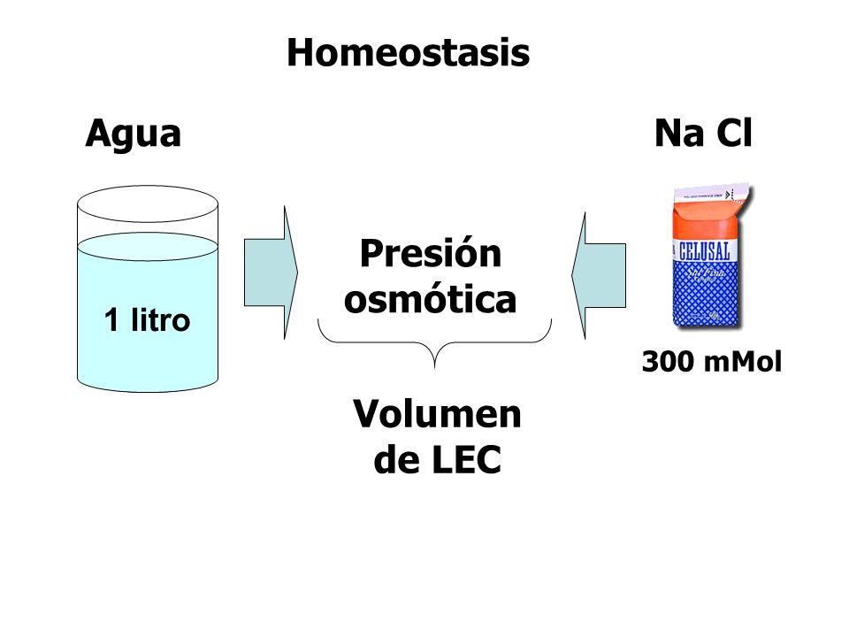 Presión osmótica Volumen de LEC