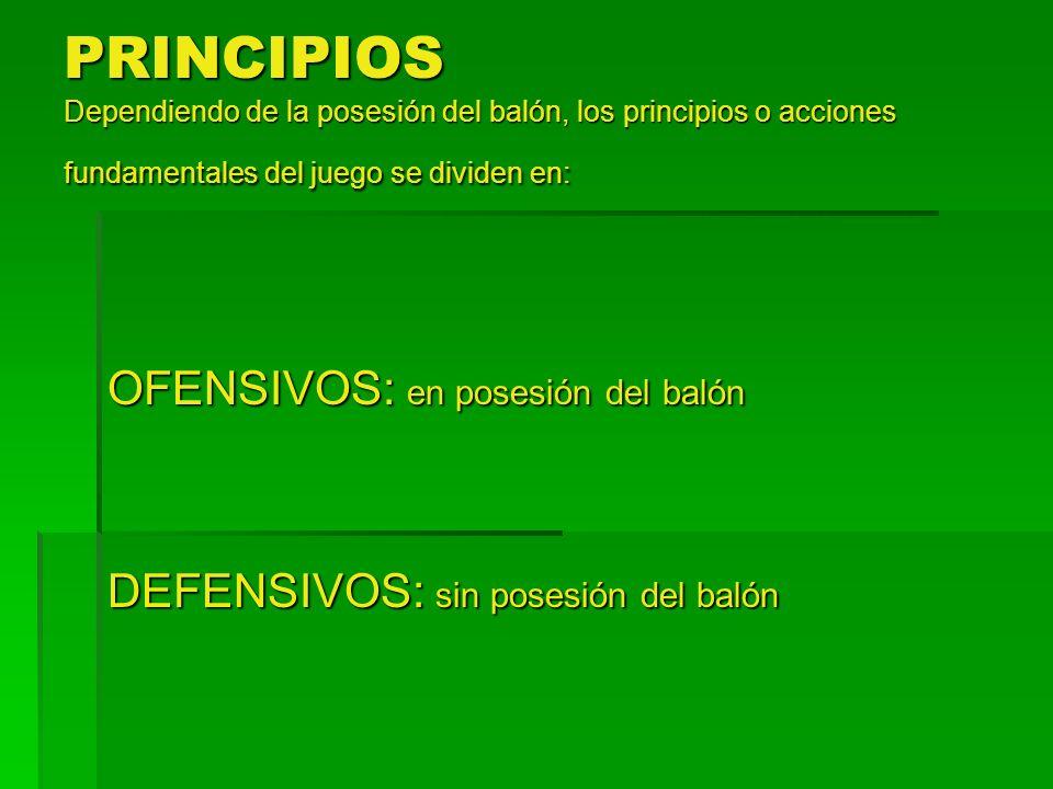 PRINCIPIOS Dependiendo de la posesión del balón, los principios o acciones fundamentales del juego se dividen en: