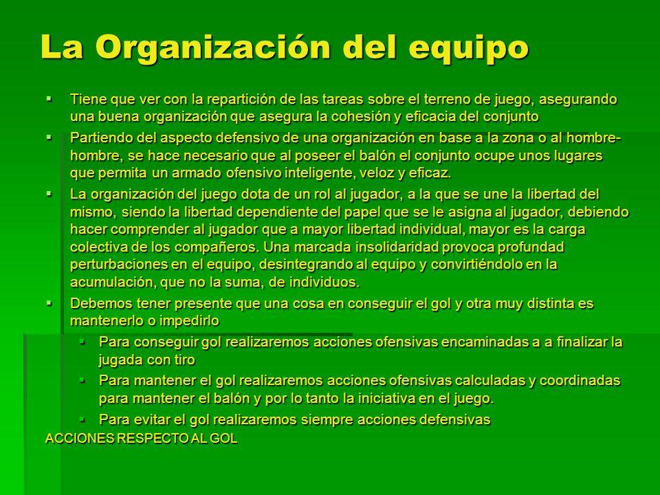 La Organización del equipo