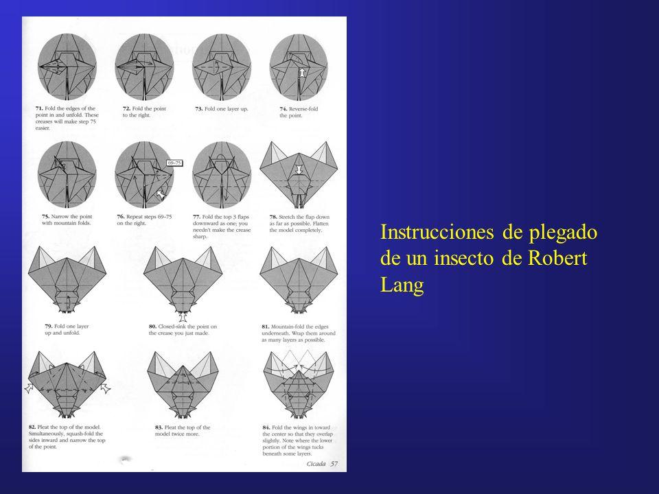 Instrucciones de plegado de un insecto de Robert Lang