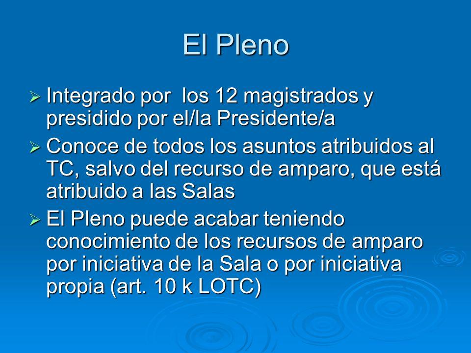 El PlenoIntegrado por los 12 magistrados y presidido por el/la Presidente/a.