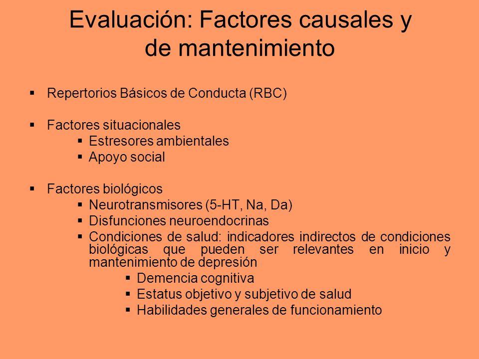 Evaluación: Factores causales y de mantenimiento