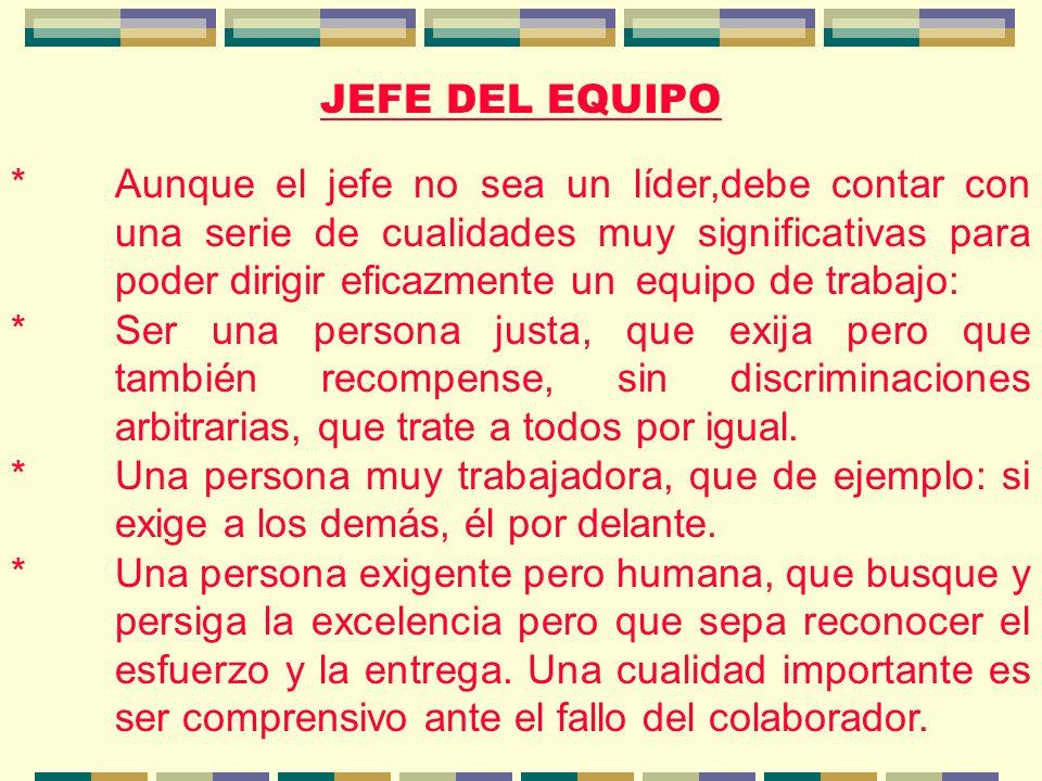 JEFE DEL EQUIPO