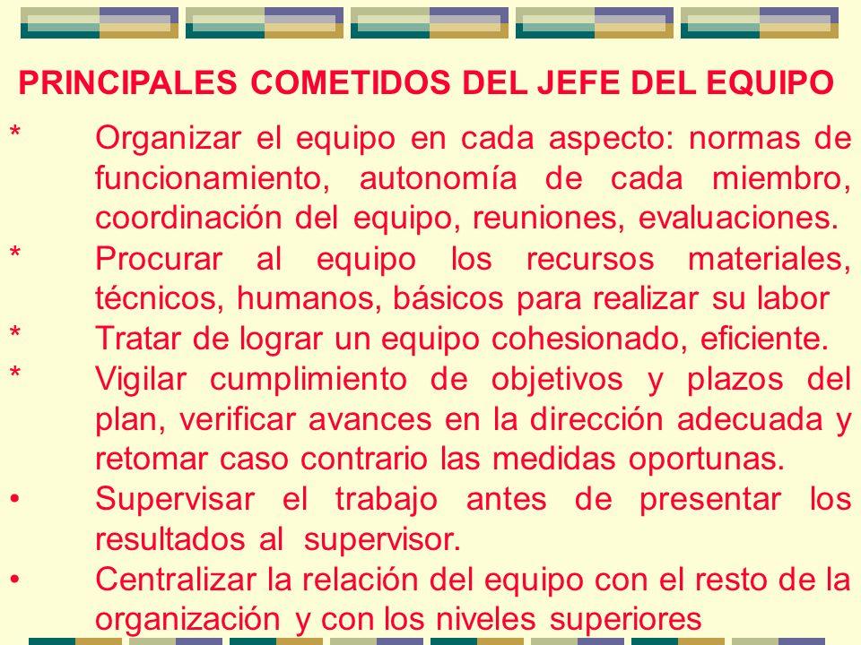 PRINCIPALES COMETIDOS DEL JEFE DEL EQUIPO