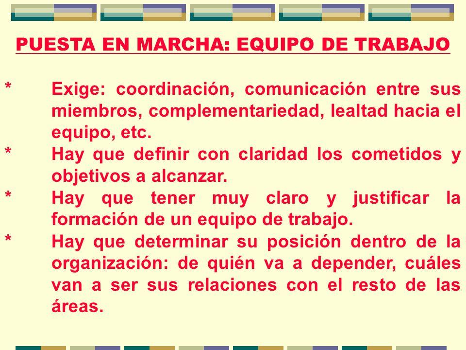 PUESTA EN MARCHA: EQUIPO DE TRABAJO