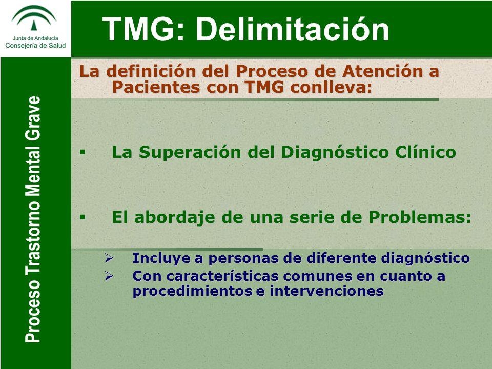 TMG: Delimitación GESTION POR PROCESOS Definición