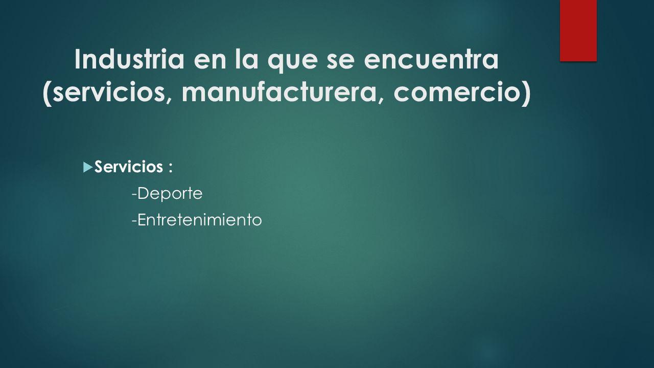 Industria en la que se encuentra (servicios, manufacturera, comercio)