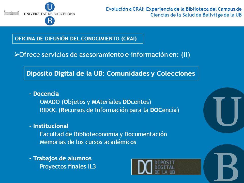 Ofrece servicios de asesoramiento e información en: (II)