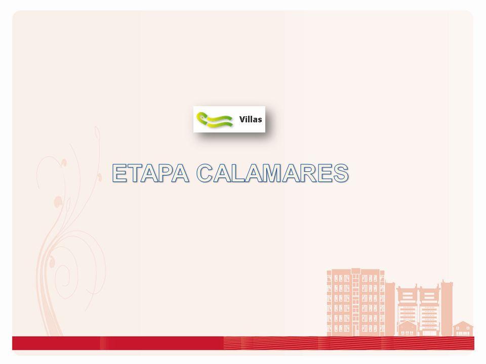 ETAPA CALAMARES