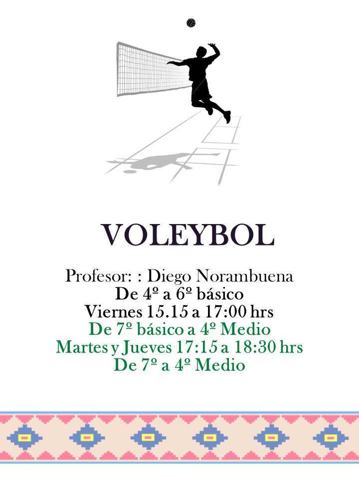 Profesor: : Diego Norambuena