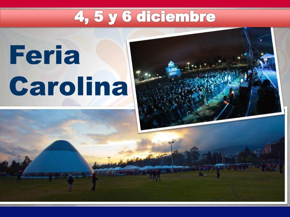 4, 5 y 6 diciembre Feria Carolina
