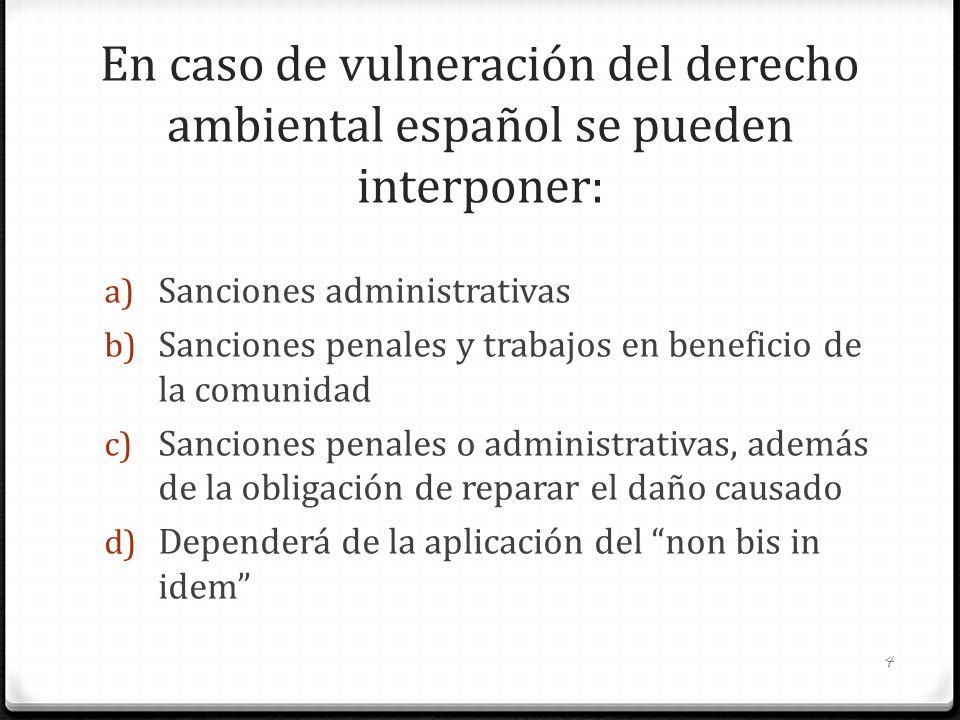 En caso de vulneración del derecho ambiental español se pueden interponer: