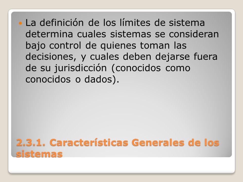 2.3.1. Características Generales de los sistemas