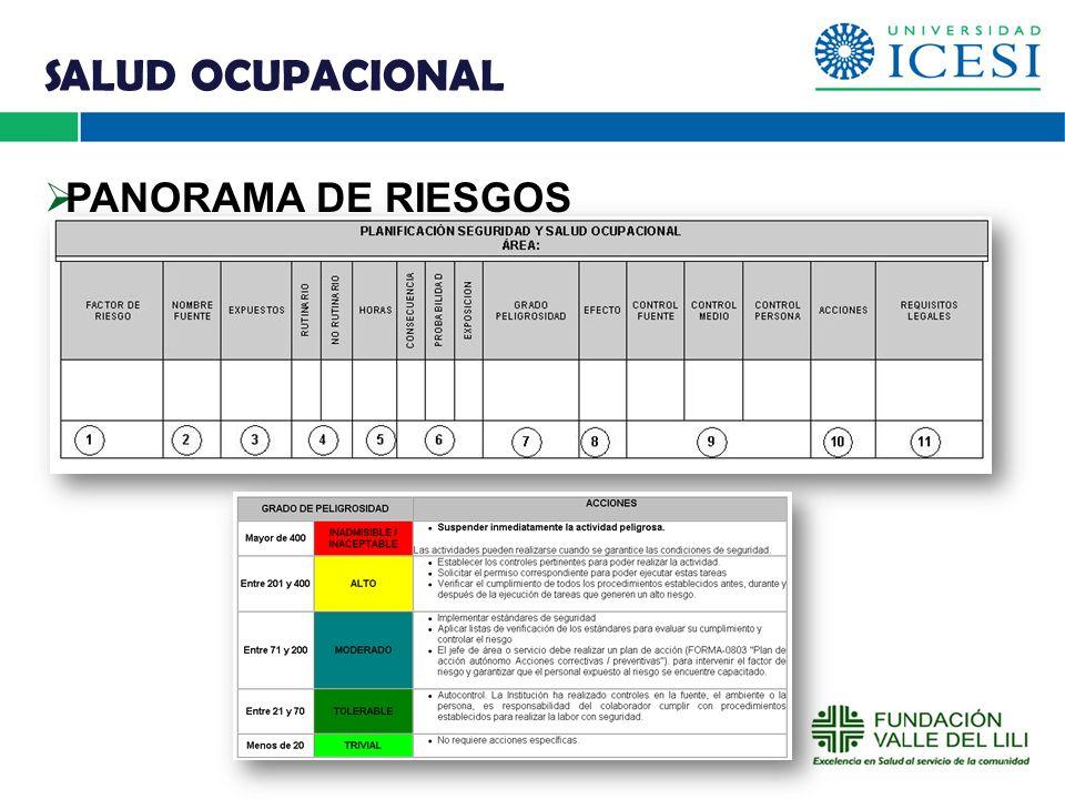 SALUD OCUPACIONAL PANORAMA DE RIESGOS O