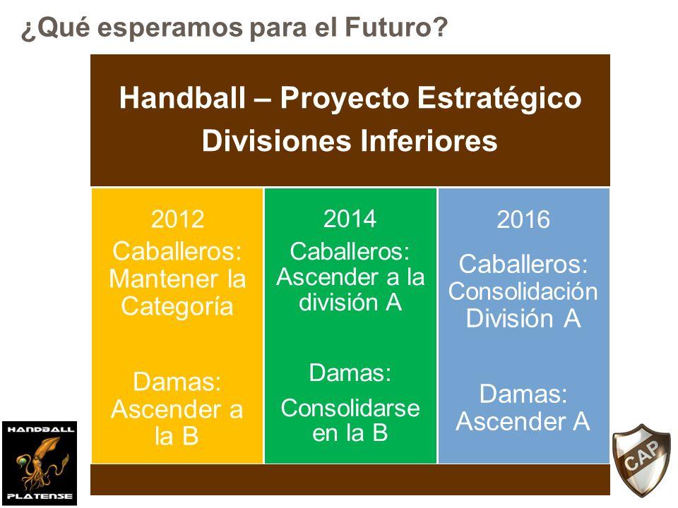 Handball – Proyecto Estratégico Divisiones Inferiores