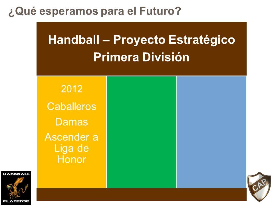 Handball – Proyecto Estratégico