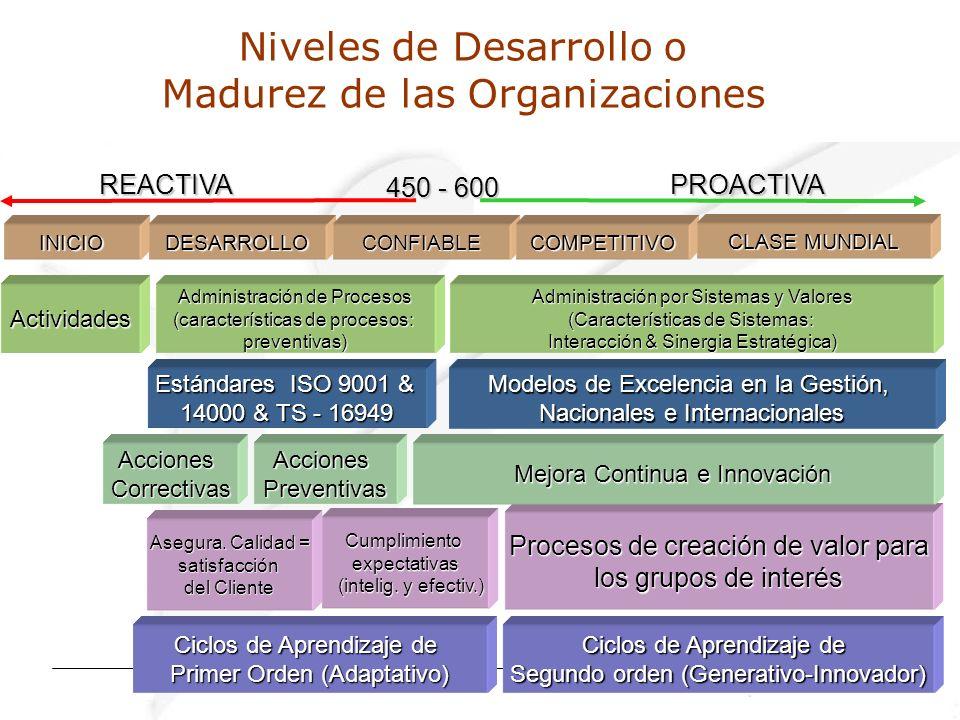 Niveles de Desarrollo o Madurez de las Organizaciones