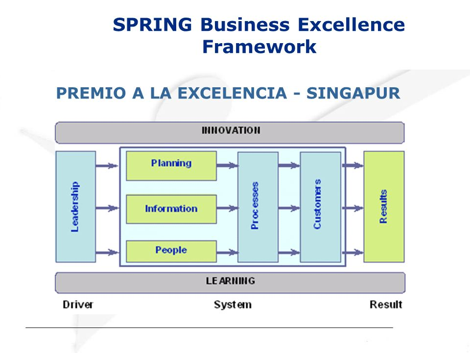 SPRING Business Excellence Framework