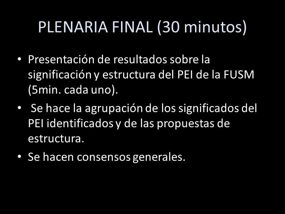 PLENARIA FINAL (30 minutos)
