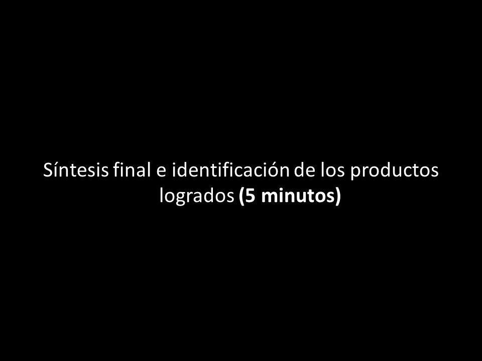 Síntesis final e identificación de los productos logrados (5 minutos)
