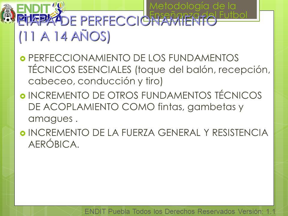 ETAPA DE PERFECCIONAMIENTO (11 A 14 AÑOS)
