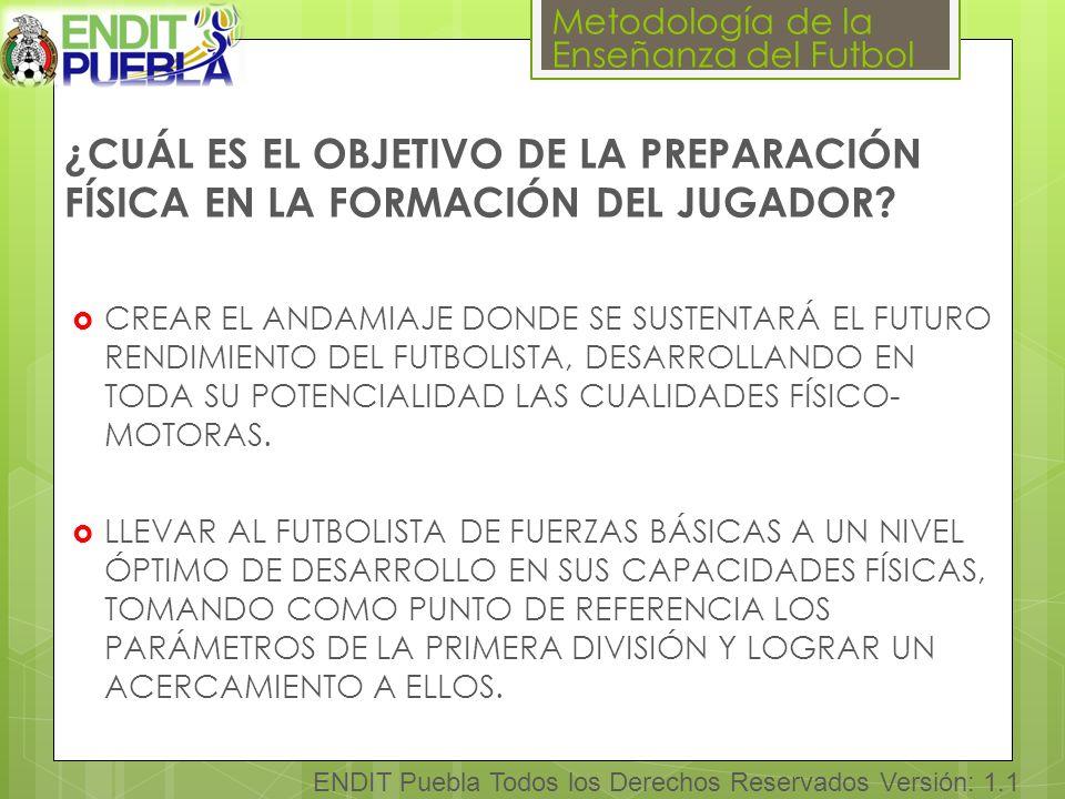 ¿CUÁL ES EL OBJETIVO DE LA PREPARACIÓN FÍSICA EN LA FORMACIÓN DEL JUGADOR