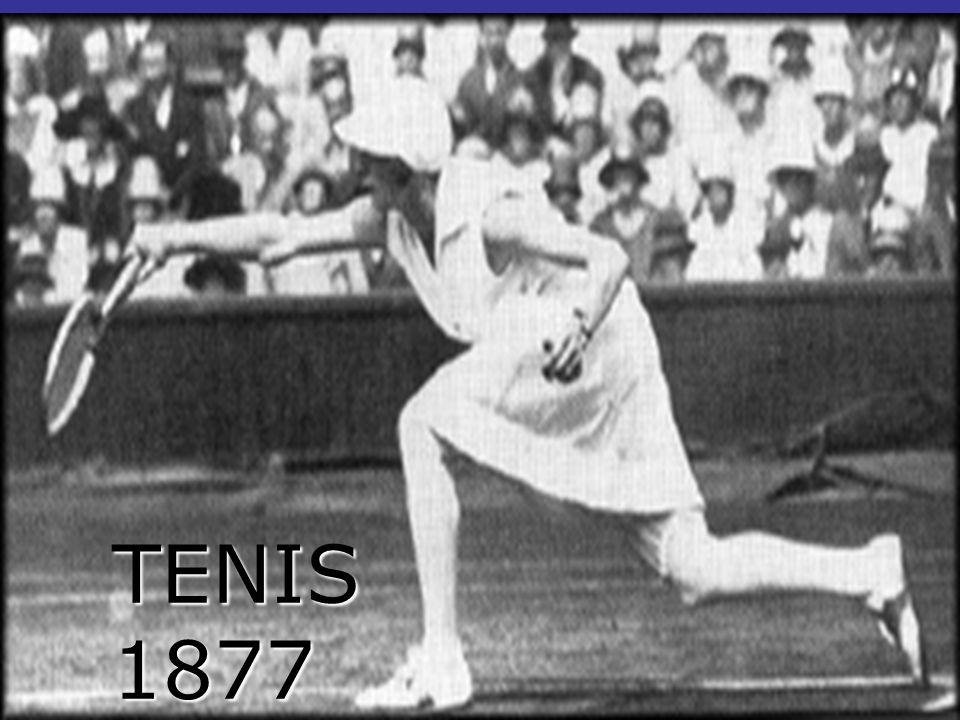 TENIS 1877