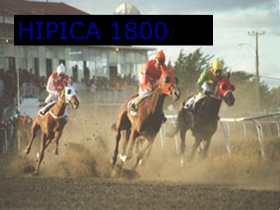 HIPICA 1800