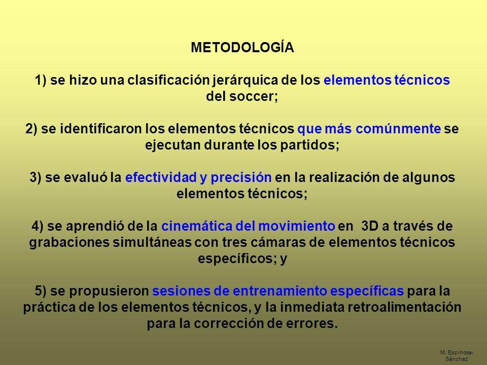 1) se hizo una clasificación jerárquica de los elementos técnicos