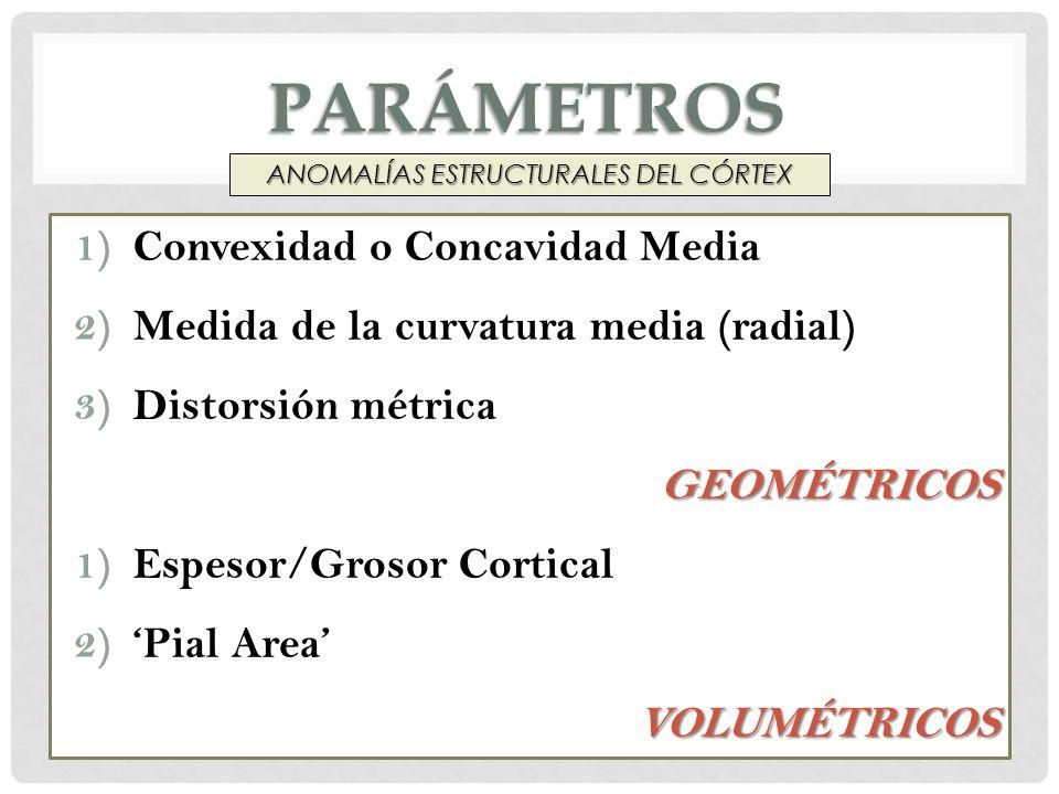 ANOMALÍAS ESTRUCTURALES DEL CÓRTEX