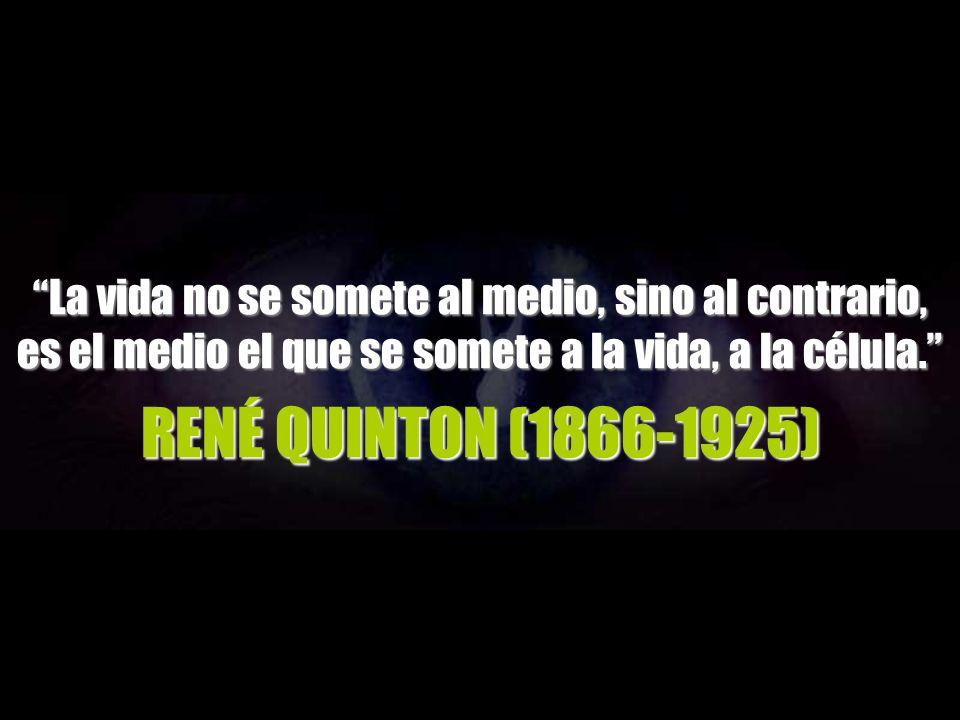 RENÉ QUINTON (1866-1925) RENÉ QUINTON (1866-1925)