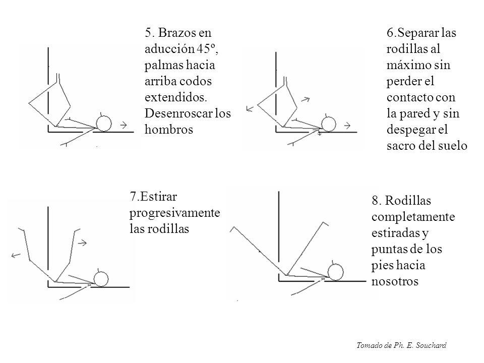 7.Estirar progresivamente las rodillas