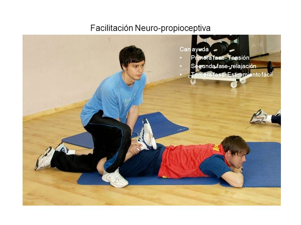 Facilitación Neuro-propioceptiva