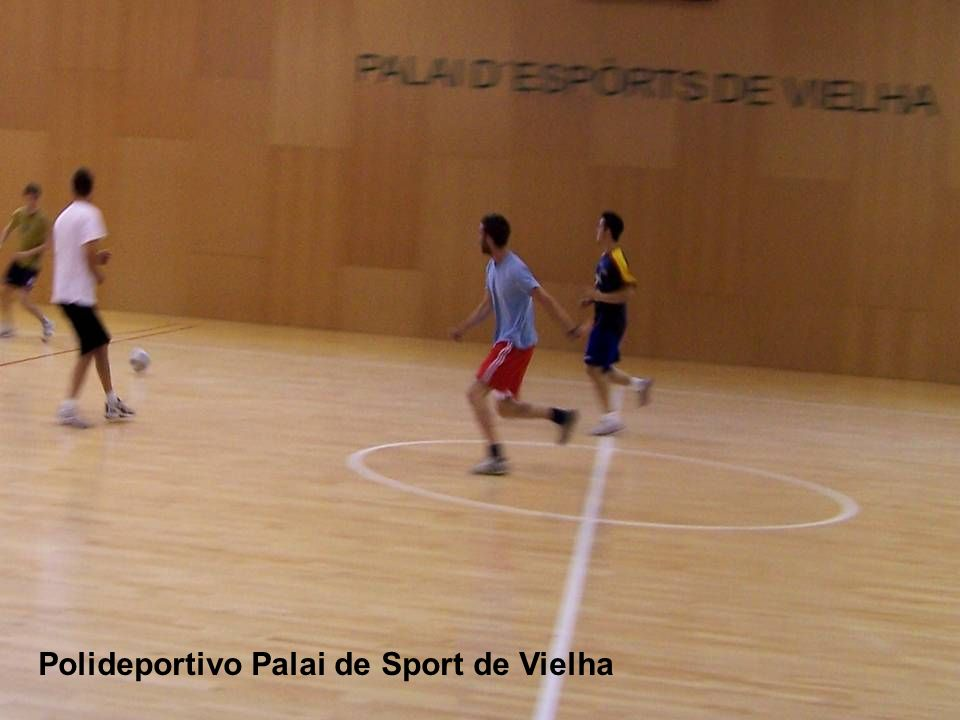 Polideportivo Palai de Sport de Vielha