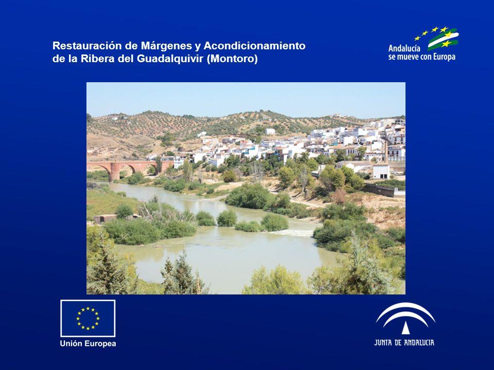 Restauración de Márgenes y Acondicionamiento de la Ribera del Guadalquivir (Montoro)
