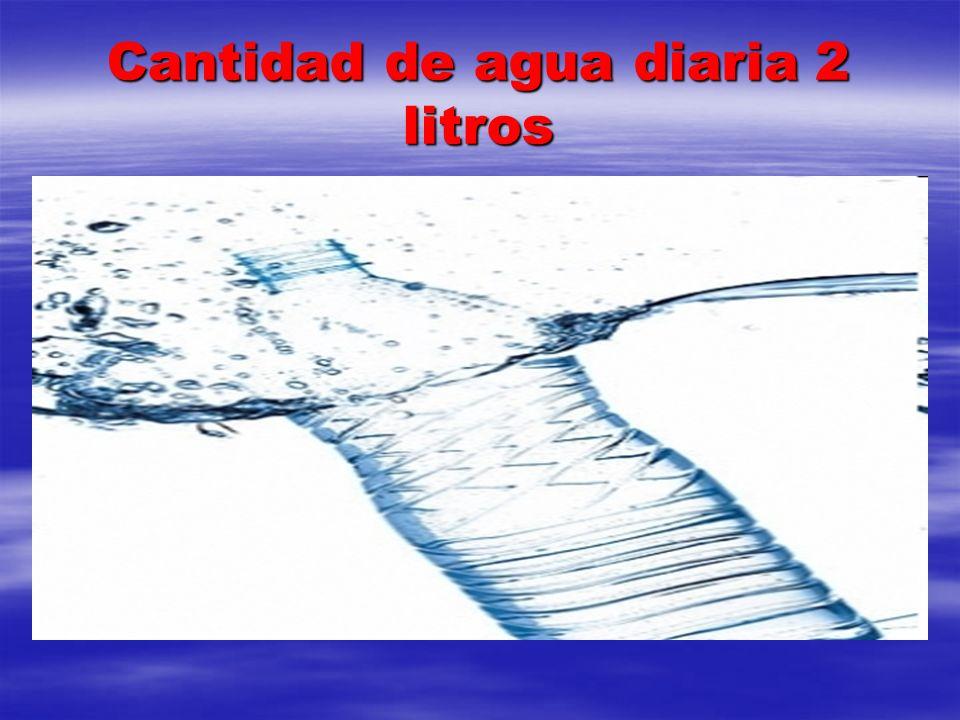 Cantidad de agua diaria 2 litros