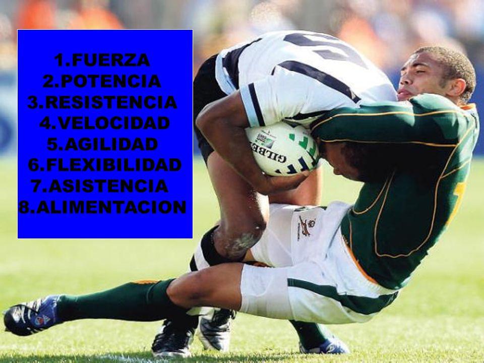 FUERZA POTENCIA RESISTENCIA VELOCIDAD AGILIDAD FLEXIBILIDAD ASISTENCIA ALIMENTACION