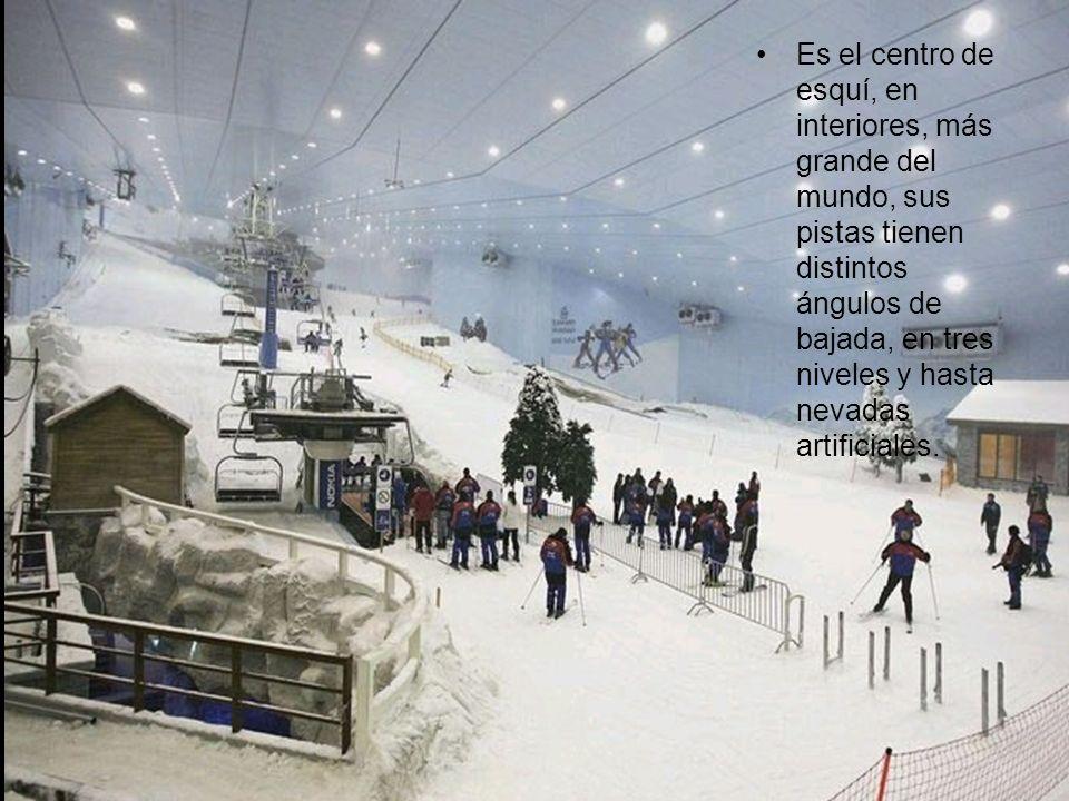 Es el centro de esquí, en interiores, más grande del mundo, sus pistas tienen distintos ángulos de bajada, en tres niveles y hasta nevadas artificiales.
