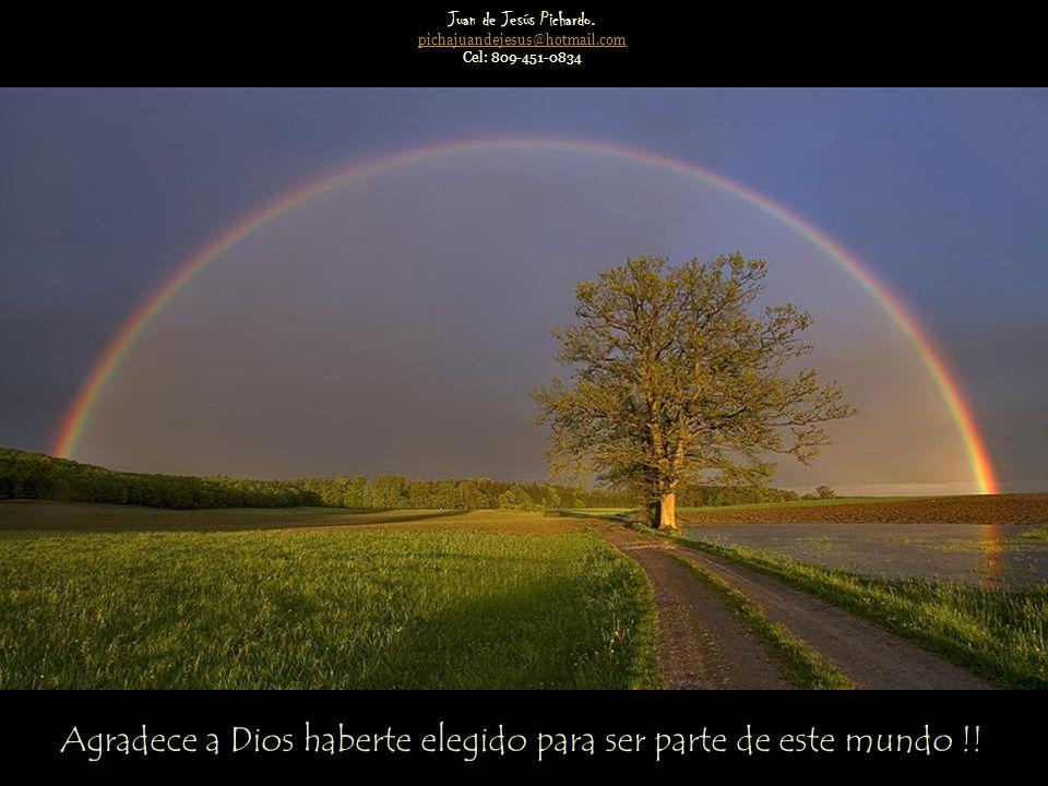 Juan de Jesús Pichardo. pichajuandejesus@hotmail.com