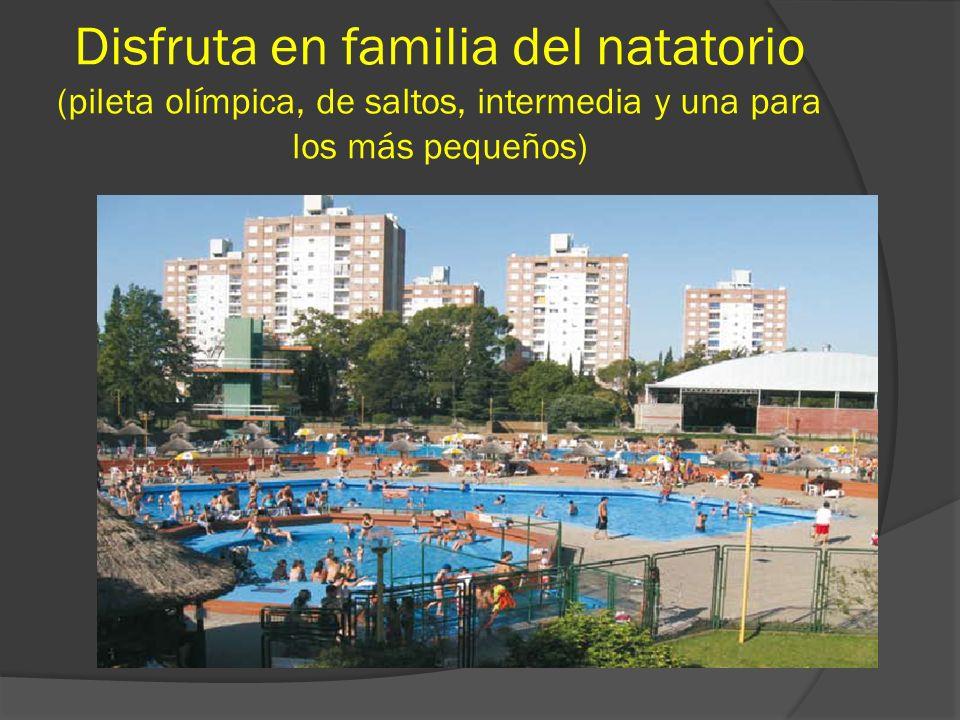Disfruta en familia del natatorio (pileta olímpica, de saltos, intermedia y una para los más pequeños)