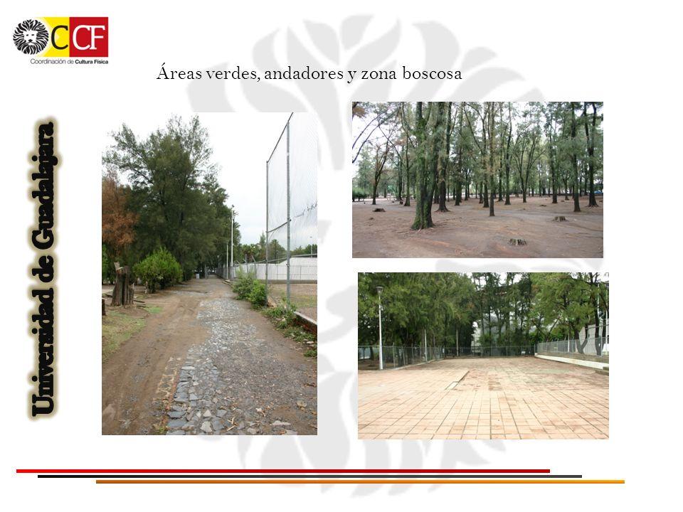 Áreas verdes, andadores y zona boscosa