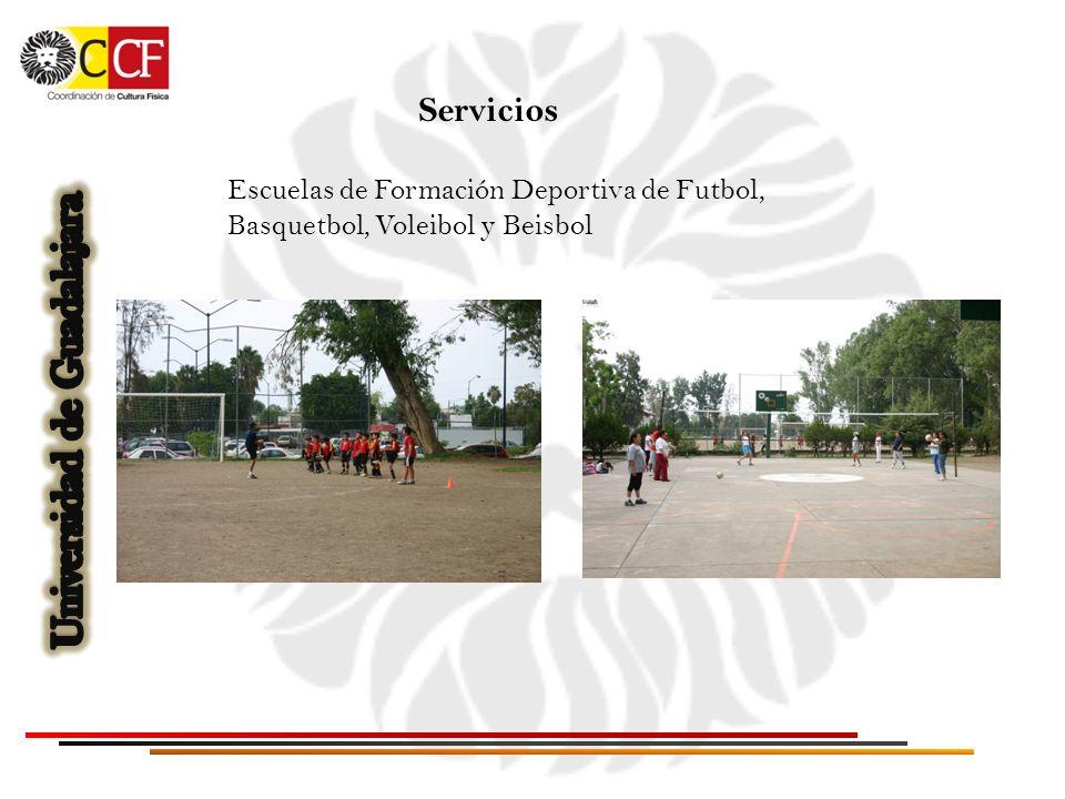 Servicios Escuelas de Formación Deportiva de Futbol, Basquetbol, Voleibol y Beisbol