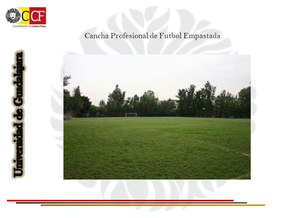 Cancha Profesional de Futbol Empastada