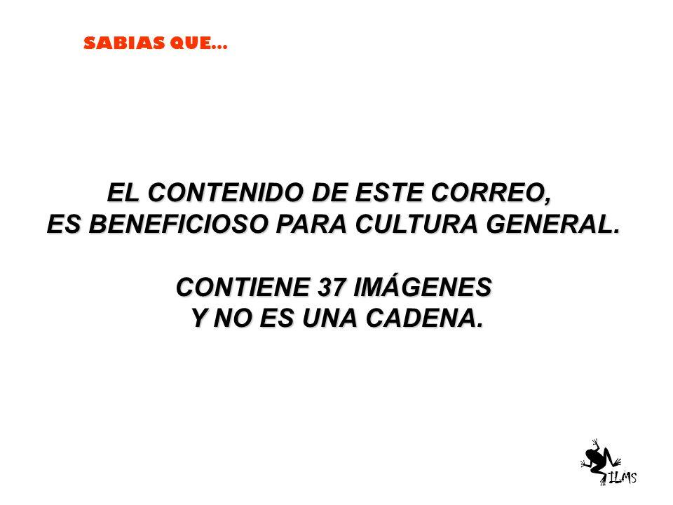 EL CONTENIDO DE ESTE CORREO, ES BENEFICIOSO PARA CULTURA GENERAL.