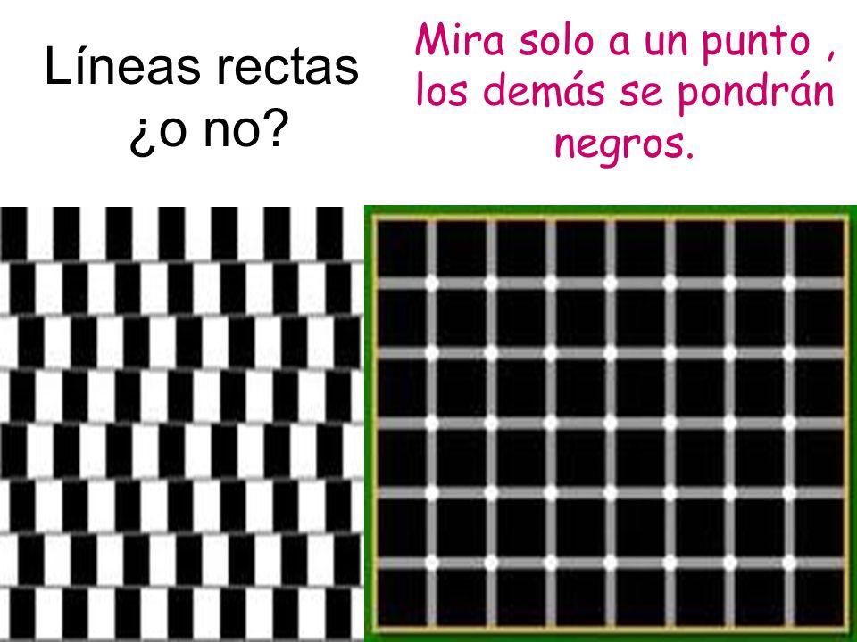 Líneas rectas ¿o no Mira solo a un punto , los demás se pondrán