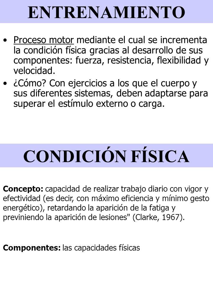 ENTRENAMIENTO CONDICIÓN FÍSICA