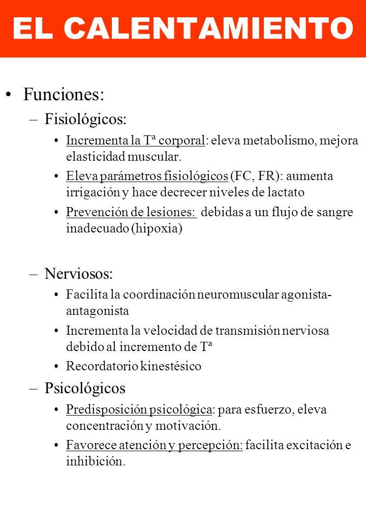 EL CALENTAMIENTO Funciones: Fisiológicos: Nerviosos: Psicológicos
