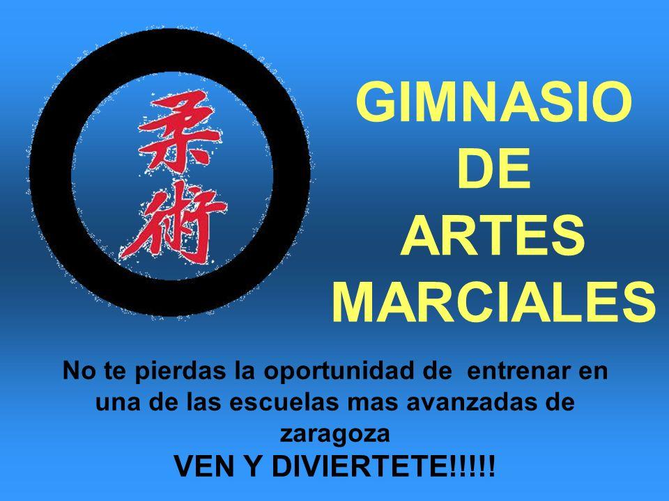 GIMNASIO DE ARTES MARCIALES