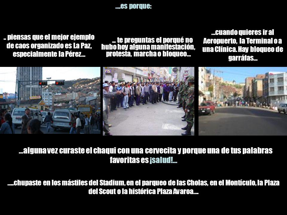 ….es porque: .. piensas que el mejor ejemplo de caos organizado es La Paz, especialmente la Pérez…