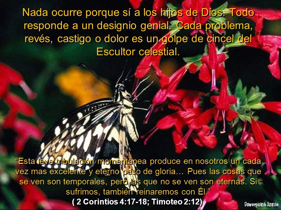 ( 2 Corintios 4:17-18; Timoteo 2:12)